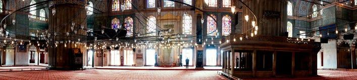 蓝色清真寺火鸡 库存图片
