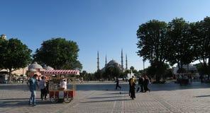 蓝色清真寺-苏丹Ahmet Camii如被看见从喷泉在公园,在伊斯坦布尔,土耳其 库存照片