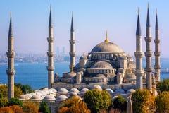 蓝色清真寺Sultanahmet Camii,伊斯坦布尔,土耳其 免版税图库摄影