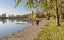 蓝色湖公园秋天风景俄勒冈 免版税库存照片