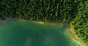 蓝色湖和绿色森林鸟瞰图在一个晴朗的夏日在黑湖,黑山 股票录像