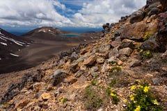 蓝色湖国家新的公园tongariro西兰 免版税库存照片
