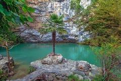 蓝色湖在秋天 阿布哈兹,在湖Ritsa附近 免版税图库摄影