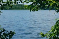 蓝色湖的看法通过绿色叶子 库存照片