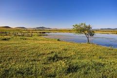 蓝色湖,绿草,小山,蓝天早晨 免版税库存照片