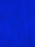 蓝色炫耀球衣 免版税库存照片