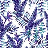 蓝色热带花和棕榈叶无缝的背景 免版税图库摄影