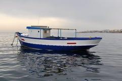 蓝色燕麦在海 图库摄影