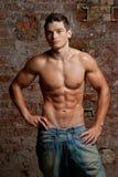 蓝色牛仔裤供以人员肌肉赤裸摆在的性感的年轻人 库存照片