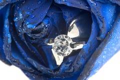 蓝色玫瑰和婚戒 免版税库存照片
