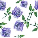 蓝色玫瑰 免版税图库摄影