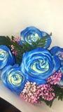 蓝色玫瑰 库存照片