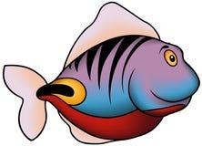 蓝色珊瑚鱼紫罗兰 库存照片