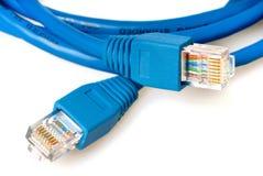 蓝色电缆插孔网络 库存照片