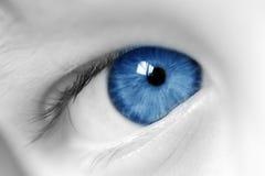 蓝色男孩样眼睛 库存图片