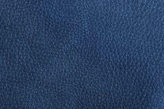 蓝色皮革 免版税库存图片