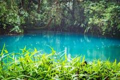 蓝色盐水湖和蕨-里约塞莱斯特河-阿雷纳尔天在哥斯达黎加附近的旅行视图 库存图片