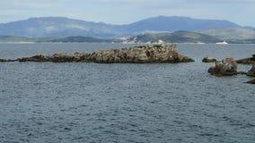 蓝色盐水湖海滩海岸, Kassiopi村庄,科孚岛海岛,希腊 爱奥尼亚海岩石海岸用清楚的绿松石水 股票录像
