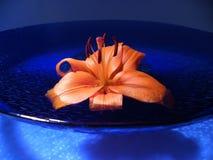 蓝色碗百合桔子 库存照片