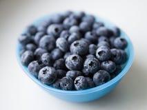 蓝色碗蓝莓 免版税库存图片