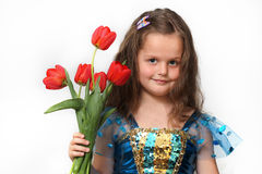 蓝色礼服的女孩有在白色背景隔绝的红色郁金香的 图库摄影