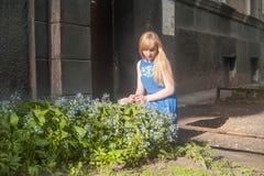 蓝色礼服的妇女金发碧眼的女人走沿城市街道的反对都市建筑学和夏天西伯利亚人秀丽背景  免版税库存照片