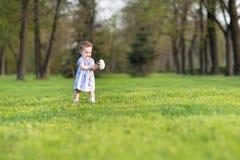 蓝色礼服的美丽的女婴有大白色翠菊的 免版税库存图片