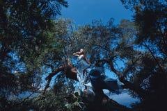 蓝色礼服的美丽的妇女在神仙的森林里 库存图片