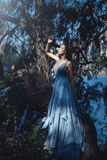 蓝色礼服的美丽的妇女在神仙的森林里 免版税库存照片
