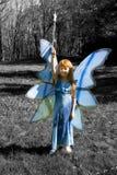蓝色神仙 库存图片