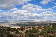 蓝色科罗拉多横向天空结构树 免版税库存图片