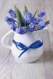 蓝色穆斯卡里柔和的春天花束在水罐开花 免版税库存照片
