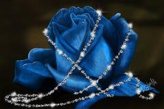 蓝色精美上升了 免版税库存图片