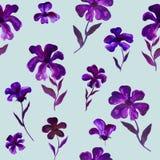 蓝色紫罗兰色紫色花例证样式-无缝的花卉样式 免版税图库摄影