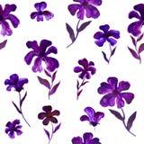 蓝色紫罗兰色紫色花例证样式-无缝的花卉样式 免版税库存图片