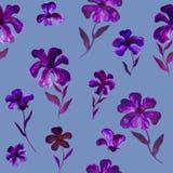 蓝色紫罗兰色紫色花例证样式-无缝的花卉样式 图库摄影