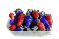蓝色红色草莓 免版税库存照片