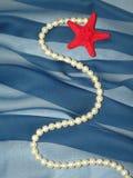 蓝色织品成珠状红色星形 库存图片