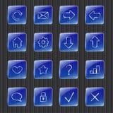蓝色网按钮 免版税库存照片