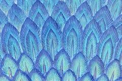 蓝色羽毛灰泥纹理 库存图片