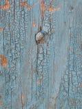 蓝色老墙壁木头 库存照片
