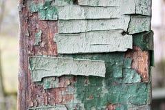 蓝色老破裂的木头纹理被绘 在果壳的老,破裂的油漆 库存照片