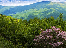 蓝色背脊山的视图 库存照片