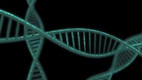 蓝色脱氧核糖核酸子线慢动作- 3D动画 生气蓬勃的脱氧核糖核酸链子 库存例证
