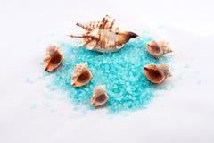 蓝色腌制槽用食盐 库存图片
