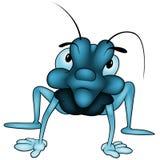 蓝色臭虫 免版税库存图片