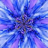 蓝色花中心拼贴画几何样式 免版税图库摄影
