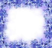 蓝色花卉框架 图库摄影