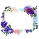 蓝色花束花 花卉植物的花 框架边界装饰品正方形 库存照片