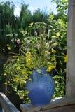蓝色花瓶用向日葵在庭院里 免版税库存图片